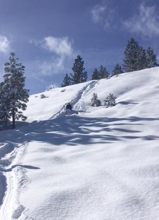 sledding tahoe